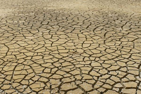 ¿Qué repercusiones tiene el cambio climático en la salud?   Salud y Bienestar